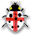 Ladybird Bug Design With England St Georges Flag Motif External Vinyl Car Sticker 90x105mm